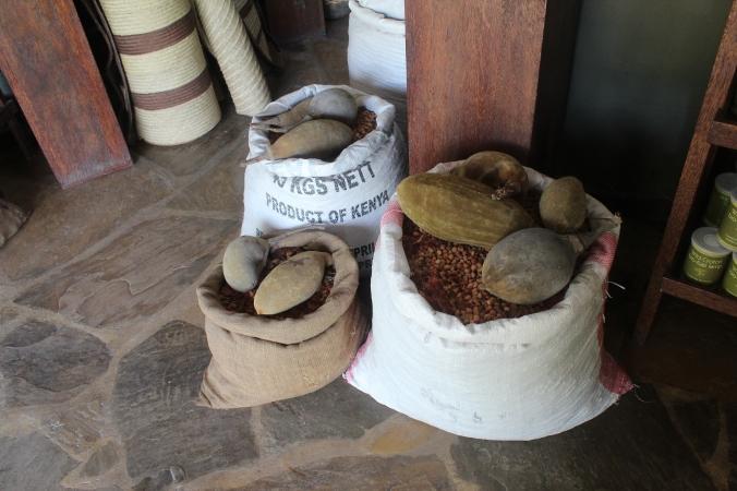 Baobab Sacks 2